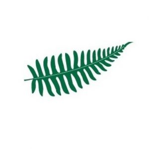 cropped-TRG-Fern-Logo.jpg